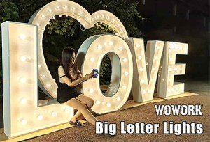 Big Marquee Letter Light